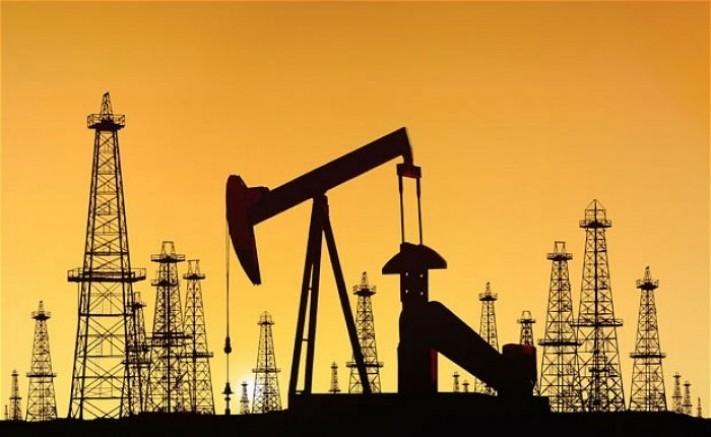 20 milyon 750 bin varil ham petrol üretildi