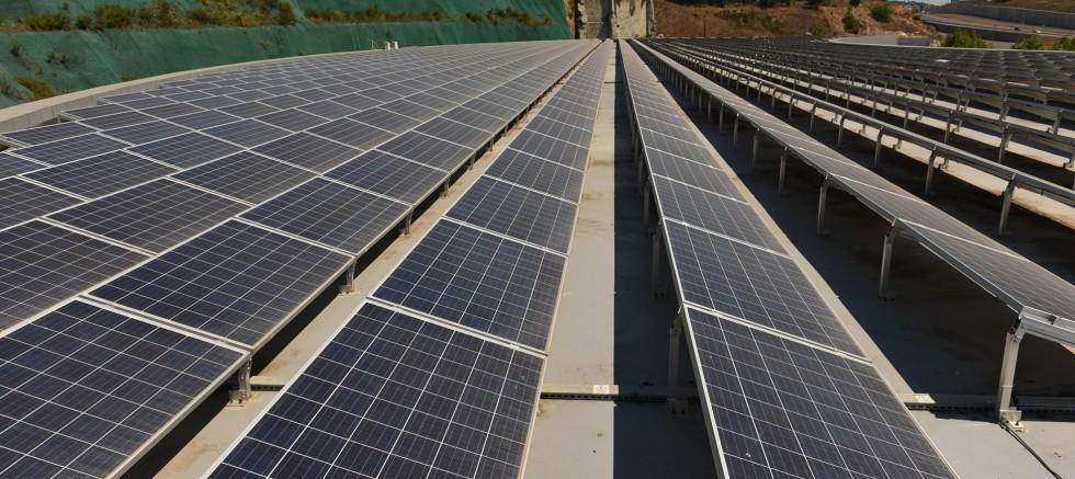Enerji Santrali 25 bin ağacın kesilmesini önlüyor
