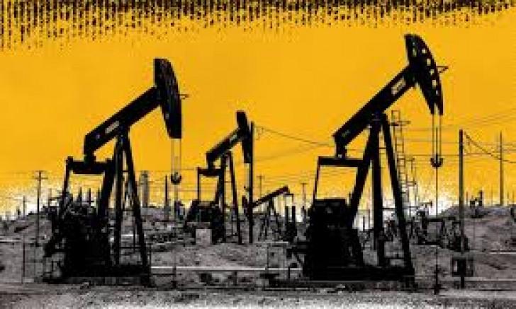 Petrol diplerde