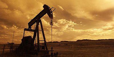 ABD ham petrol stokları 7.4 milyon varil azaldı