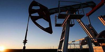 Guyana'ya ilk petrol sevkiyatı